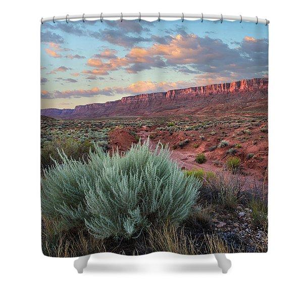 Desert And Cliffs, Vermilion Cliffs Nm Shower Curtain