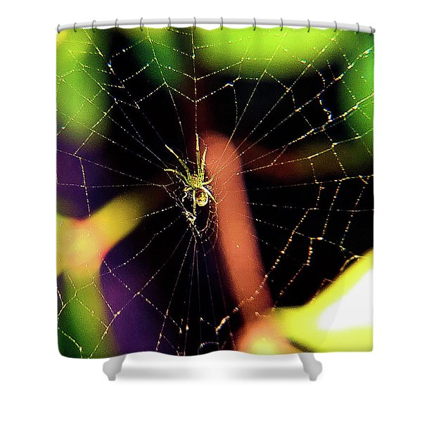 Web Of Hearts Shower Curtain