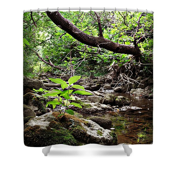 The Bluesy Bubbling Brook Shower Curtain