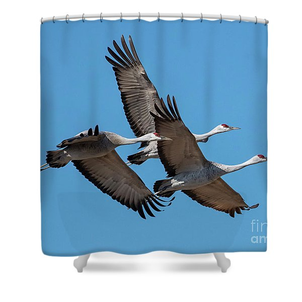 Tight Formation Shower Curtain