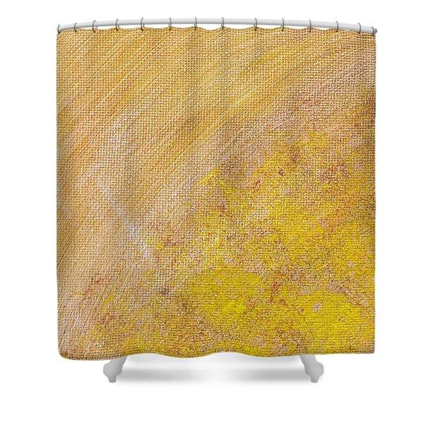 26 Shower Curtain