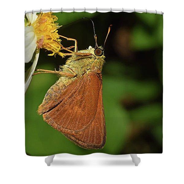 Skipper Butterfly Shower Curtain