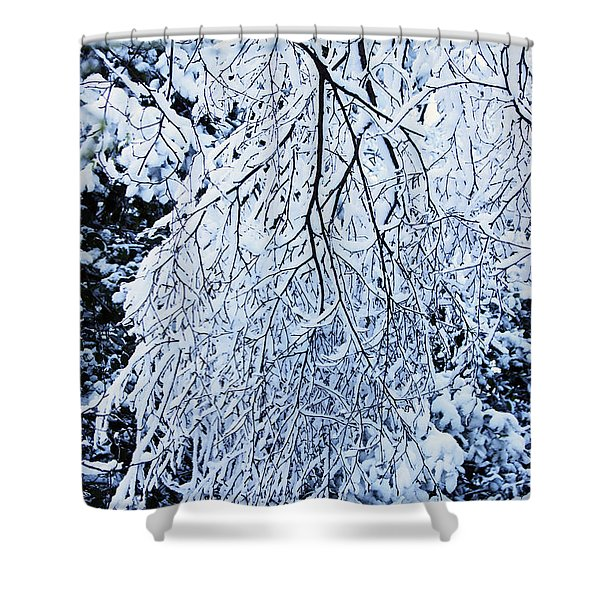 30/01/19  Rivington. Snow Covered Branches. Shower Curtain