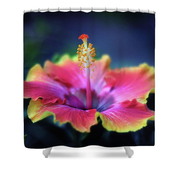Hibiscus Delight Shower Curtain