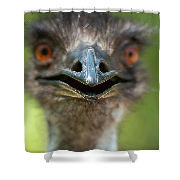 Shower Curtain featuring the photograph Australian Emu Outdoors by Rob D Imagery