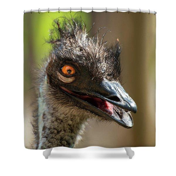Australian Emu Outdoors Shower Curtain