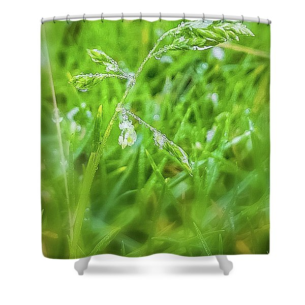 Nature Shower Curtain