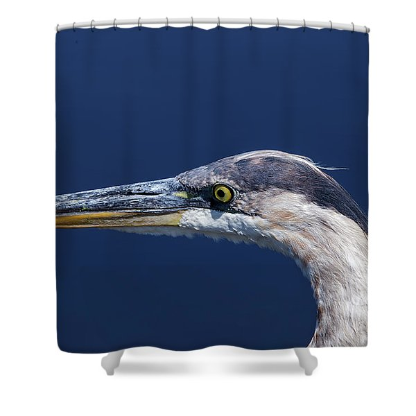 A Blue Portrait Shower Curtain