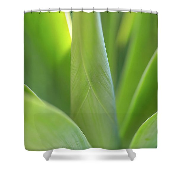 A Bouquet Of Leaves Shower Curtain