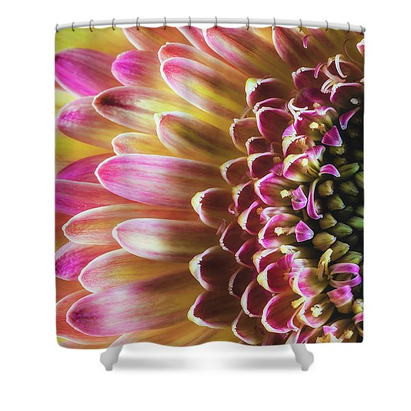 A Burst Of Spring Shower Curtain