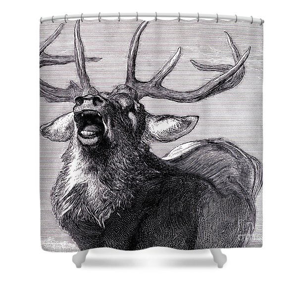 A Challenge, 1845  Shower Curtain