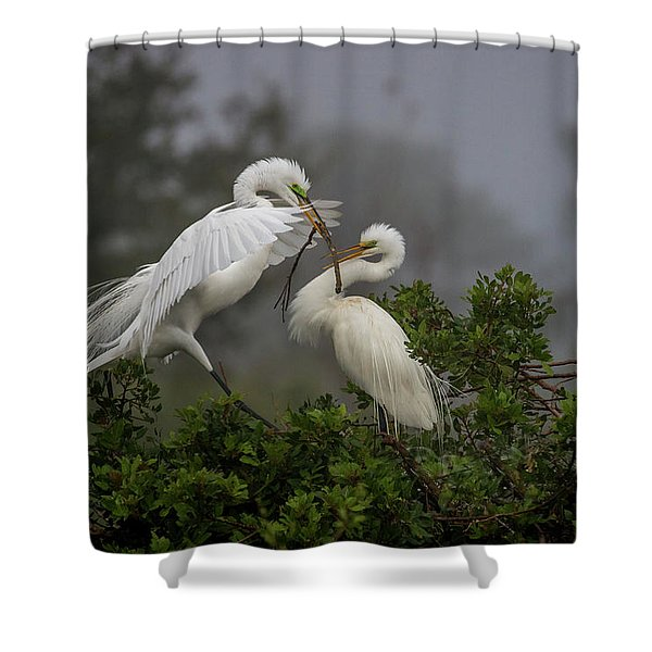 A Couple Of Birds Shower Curtain