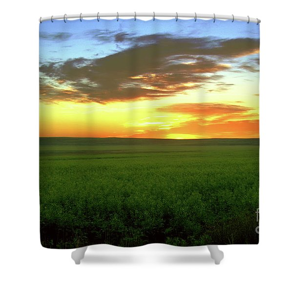 A Field At Sunset Shower Curtain