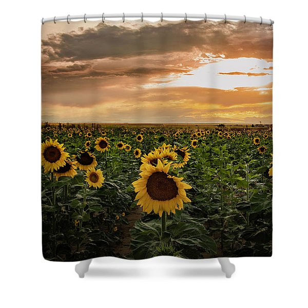 A Field Of Sunflowers At Sunset Shower Curtain