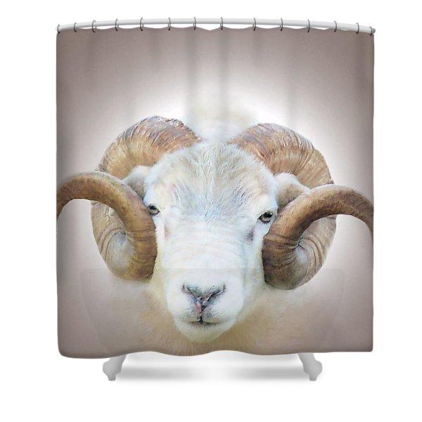 A Little Ram  Shower Curtain