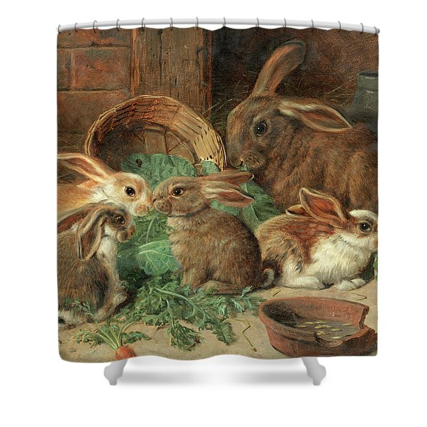 A Mother Rabbit And Her Young Shower Curtain