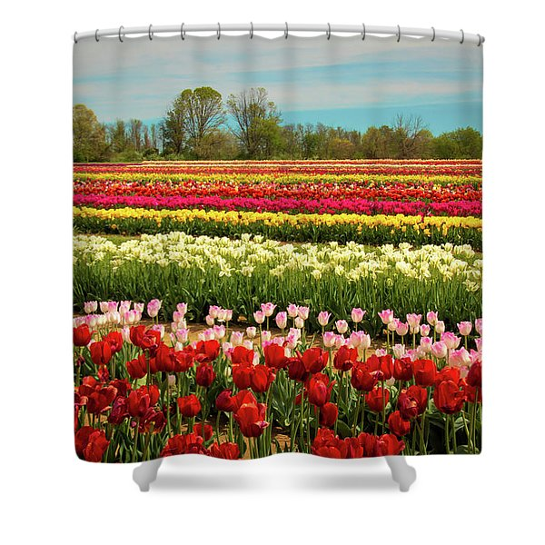 A Piece Of Holland In Jersey Shower Curtain