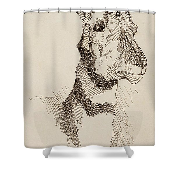 A Pronghorn Antelope By Remington Shower Curtain