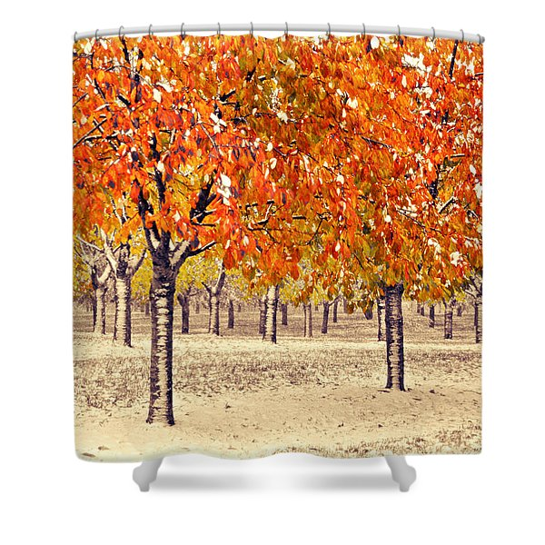 A Touch Of Winter Shower Curtain