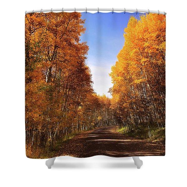 A Walk Down Memory Lane Shower Curtain