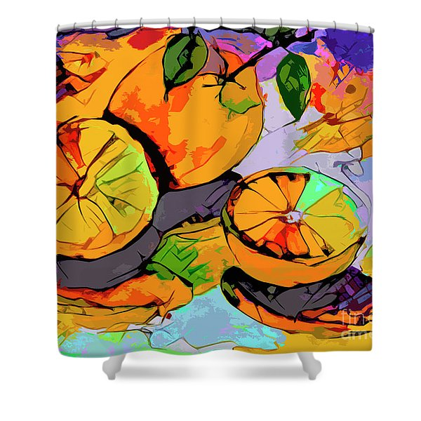 Abstract Oranges Modern Food Art Shower Curtain