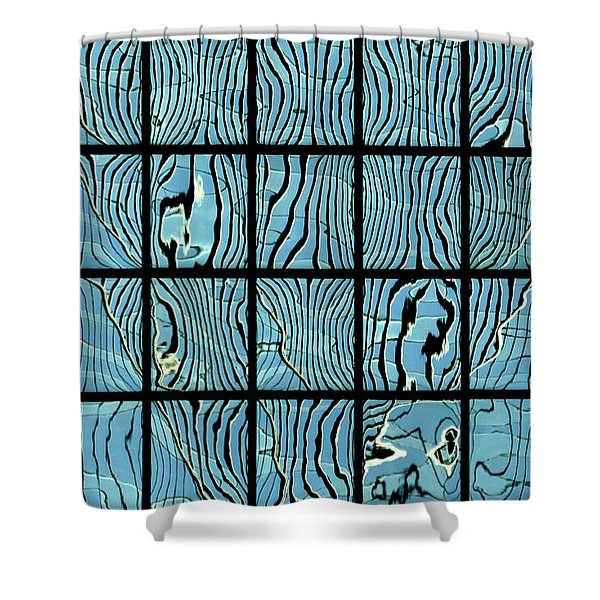 Abstritecture 14 Shower Curtain