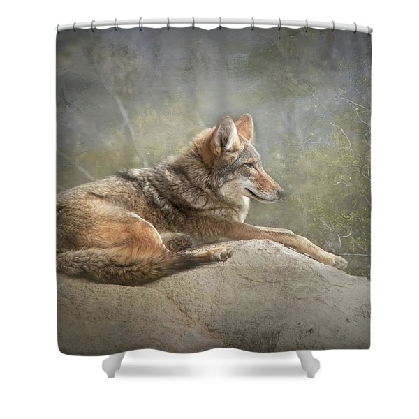 Afternoon Repose Shower Curtain