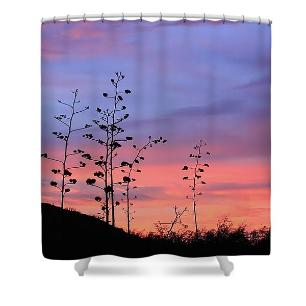 Shower Curtain featuring the photograph Agave Sunset 1 by Dawn Richards