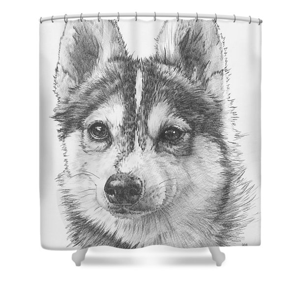 Alaskan Klee Kai Shower Curtain