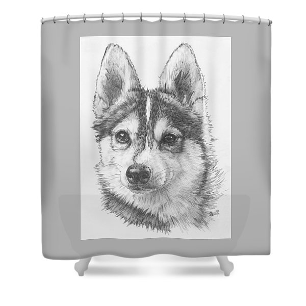 Shower Curtain featuring the drawing Alaskan Klee Kai by Barbara Keith