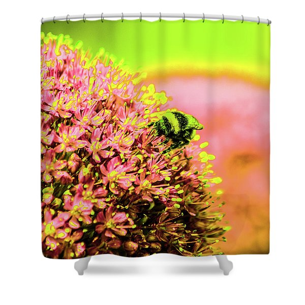 Allium With Bee 1 Shower Curtain