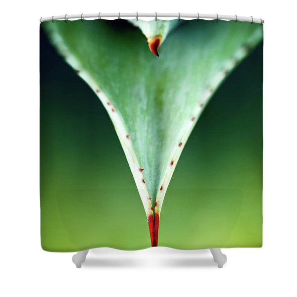 Aloe Thorn And Leaf Macro Shower Curtain