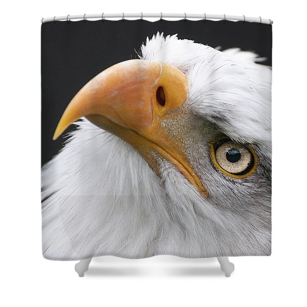 Always Look Up Shower Curtain