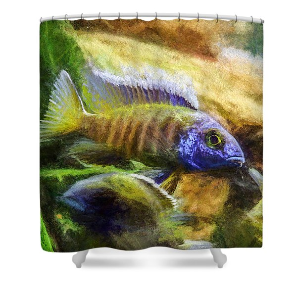 Amazing Peacock Cichlid Shower Curtain