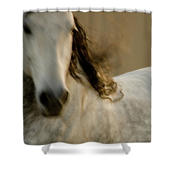 Shower Curtain featuring the photograph Americano 1 by Catherine Sobredo