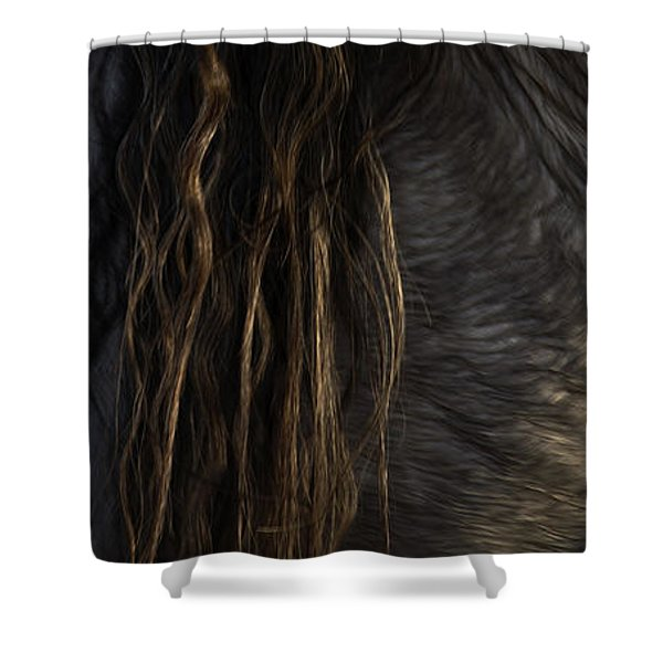 Shower Curtain featuring the photograph Americano 11 by Catherine Sobredo