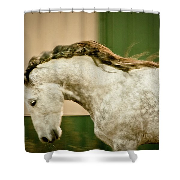 Americano 14 Shower Curtain