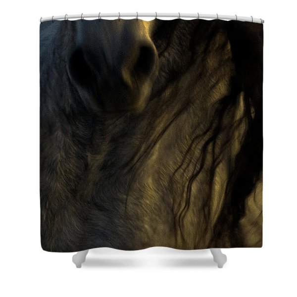 Americano 20 Shower Curtain