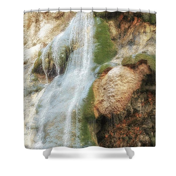 An Almost Vulnerability Shower Curtain