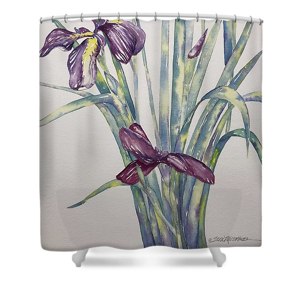 Ancient Awakening  Shower Curtain