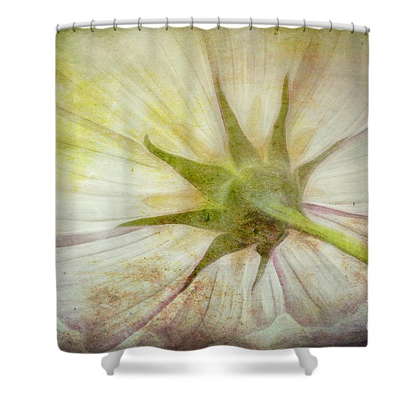 Ancient Flower Shower Curtain