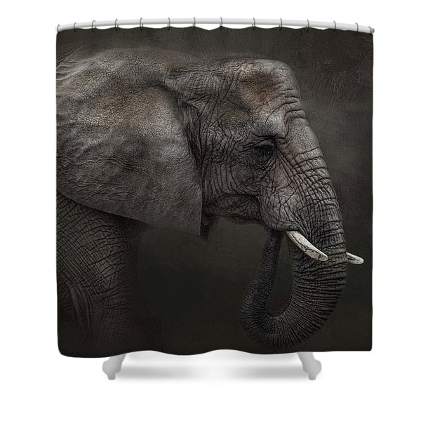 Ancient Wisdom Shower Curtain