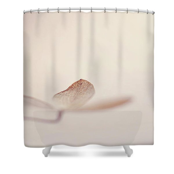 And Also Shower Curtain