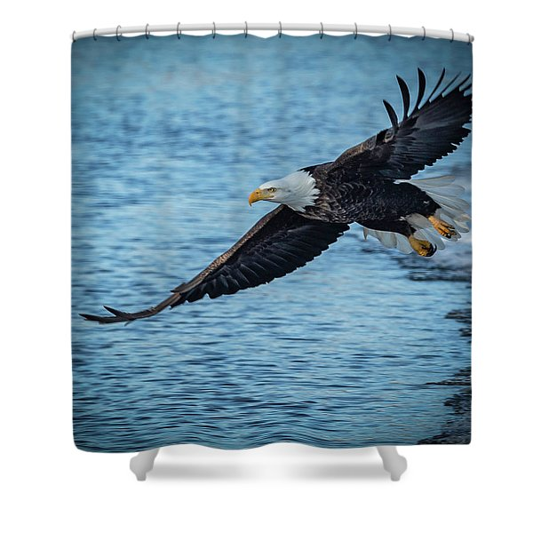 And Away We Go Shower Curtain