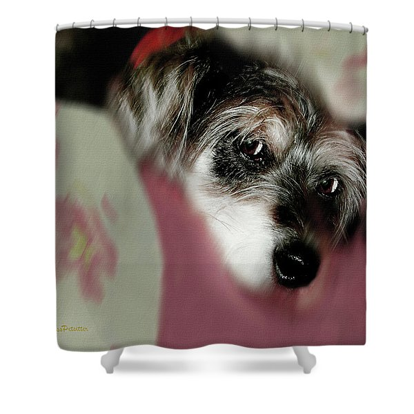 And This Is Sparky Shower Curtain