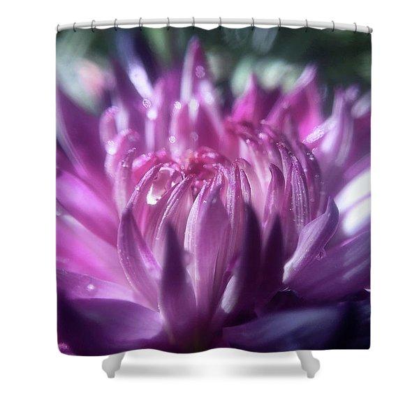 Anemone 3 Shower Curtain