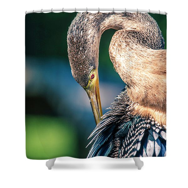 Anhinga Grooming Shower Curtain
