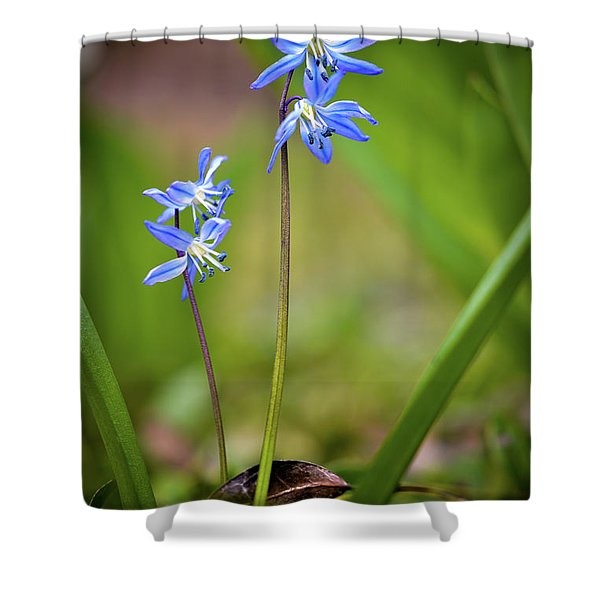 Animated Shower Curtain