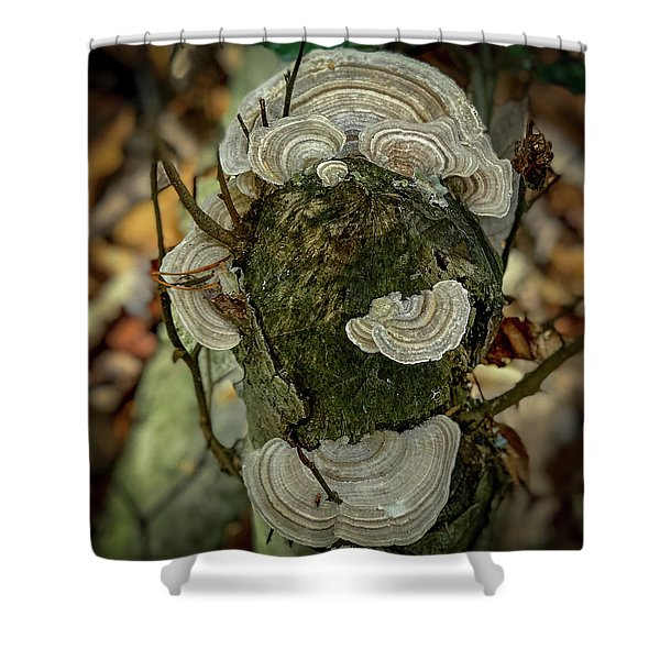 Another Fungus Shower Curtain