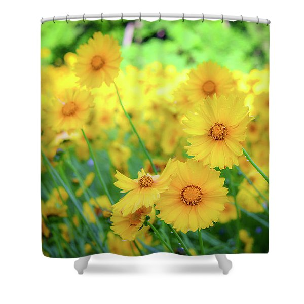 Another Glimpse, Pollinator Field Shower Curtain